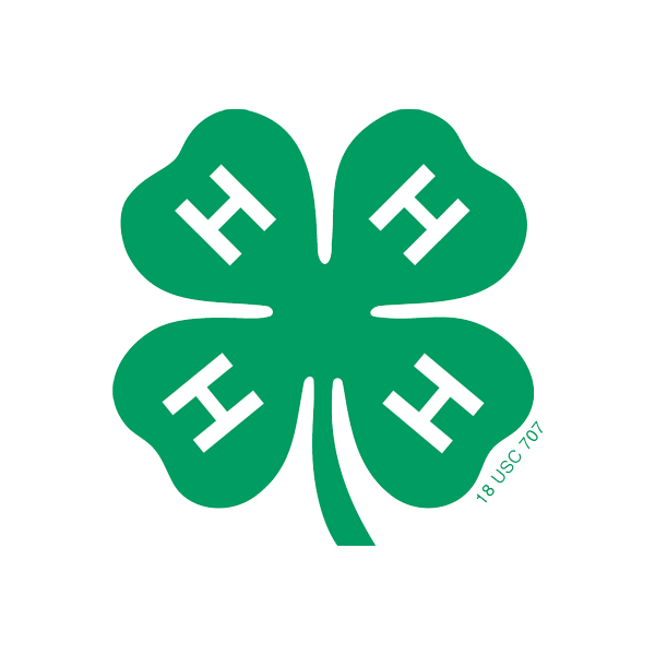 Center for 4H Youth Development